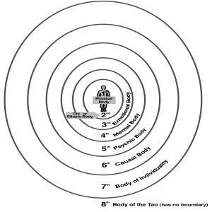 Die acht Energiekörper