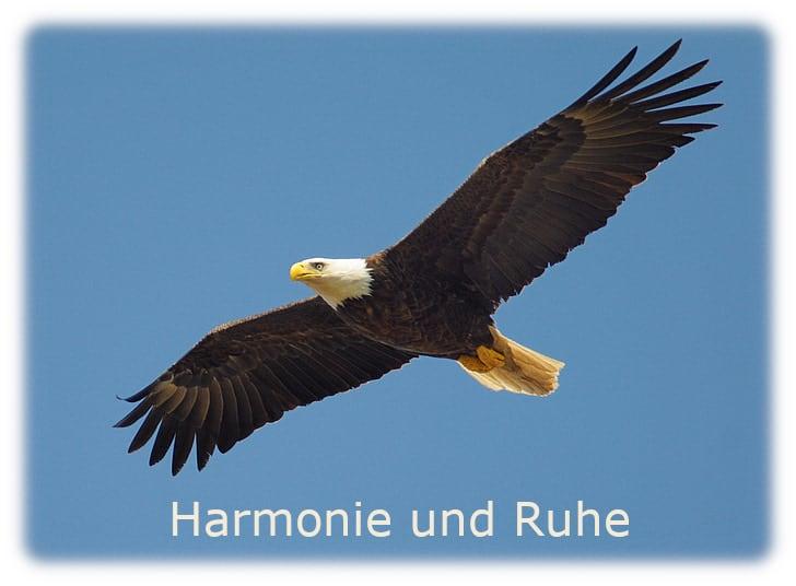 Absicht für neue Harmonie und Ruhe